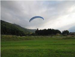 2008N1013Tgami.jpg