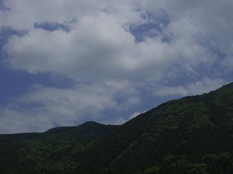 2012.05.31.asa.jpg