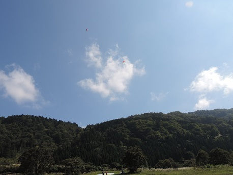2015.09.22.tomi.jpg