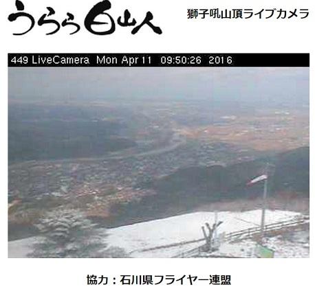 2016.04.11ライブカメラ.jpg