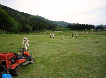 草刈お手伝い.JPG