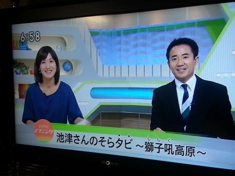 NHKtaka.jpg